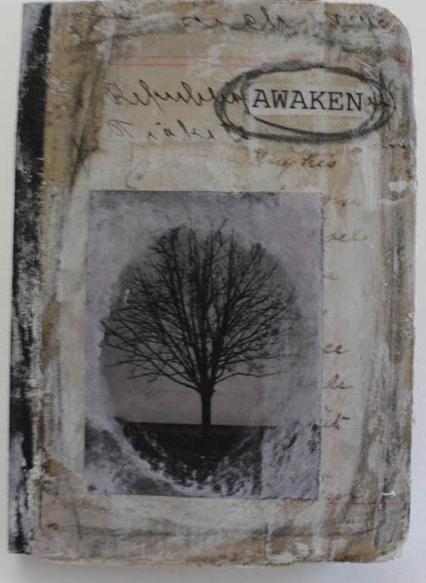 Awaken mini journal