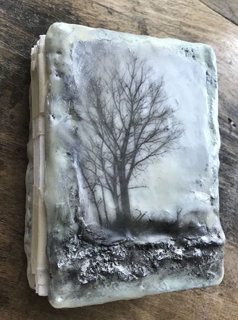 Tree of life book wax classa
