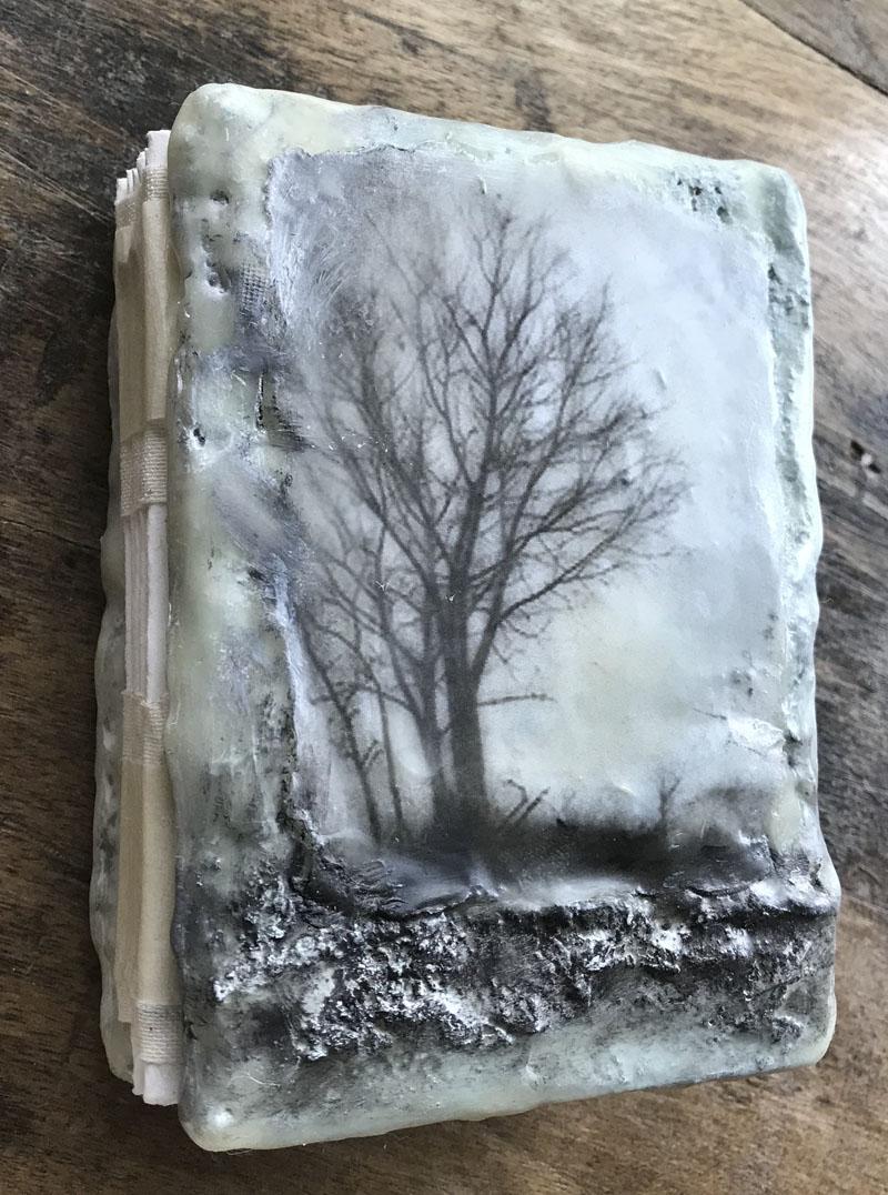 Tree of life book wax classa