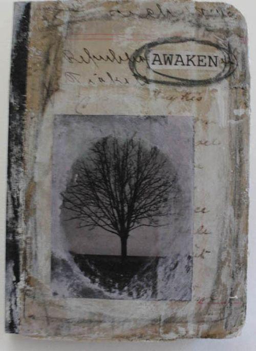 Awaken mini journal